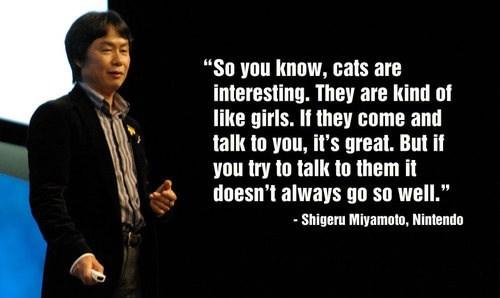 girls are kinda like cats