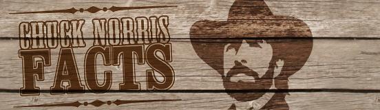 chuckNorris2_logo